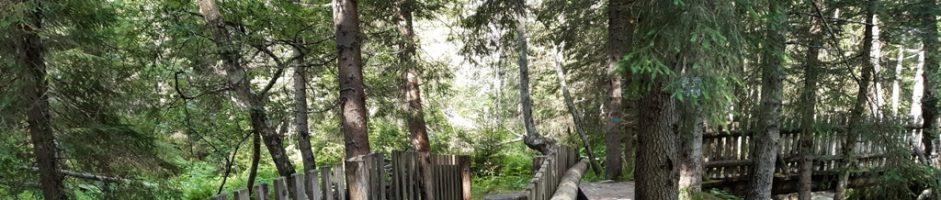 13 Novembre ore 21,00 – LO SHIATSU, una via naturale per il Benessere