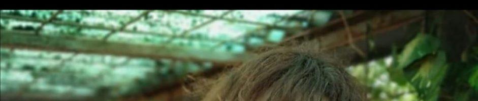 24 Marzo Ore 20.30 – Stefania Magnone in diretta Online